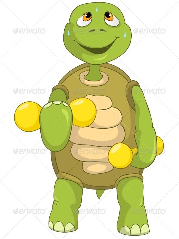 GraphicRiver Turtle Gym 4968682