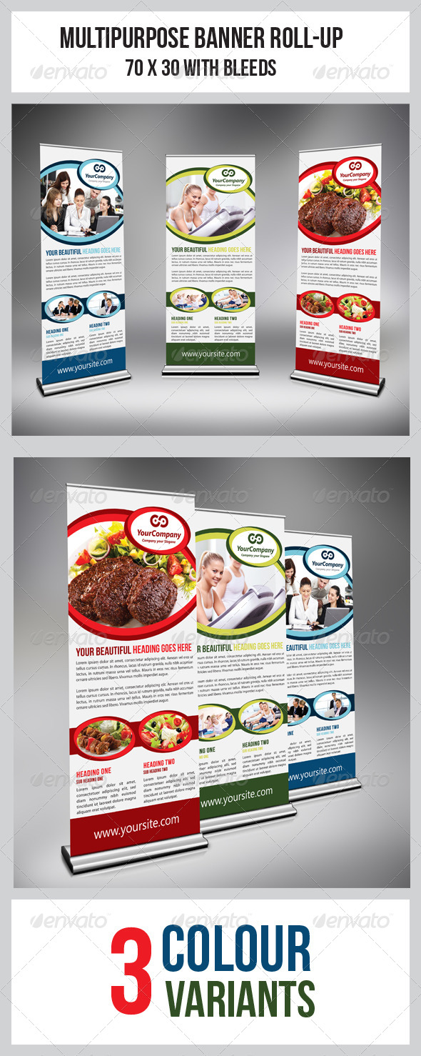 GraphicRiver Multipurpose Business Roll-Up 4977741