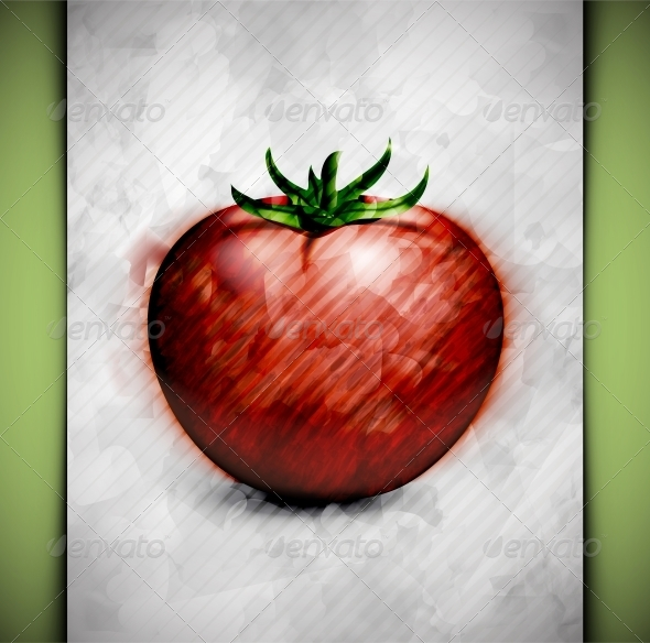 GraphicRiver Tomato Watercolor 4981351