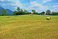 Grass Field With Hay Bales - PhotoDune Item for Sale