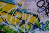 3_graffiti_3.__thumbnail