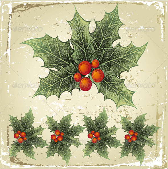 GraphicRiver Hand Drawn Holly 4987590