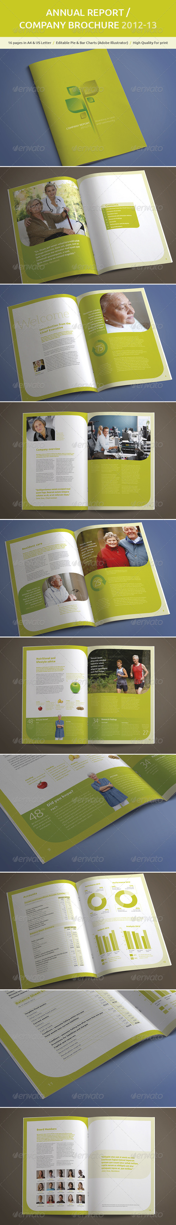 A4 Annual Report Company Brochure
