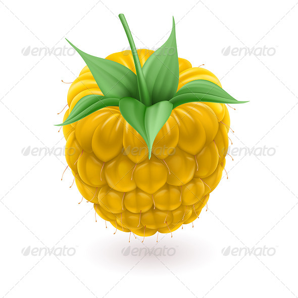 GraphicRiver Yellow Raspberries 4995769