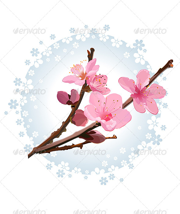 GraphicRiver Cherry Blossom 4998318