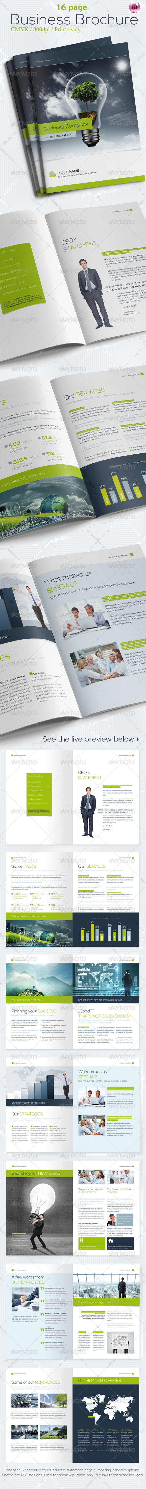 GraphicRiver 16 Pages Business Brochure 4999451