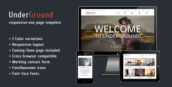 ThemeForest UnderGround Responsive One Page Template 5001071