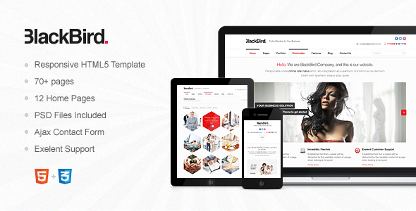 ThemeForest BlackBird Responsive HTML5 Template 5002545