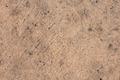 Concrete Floor - PhotoDune Item for Sale