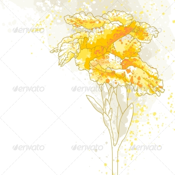 GraphicRiver Canna Flower 5004739