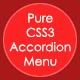 Pure CSS3 Accordion Menu