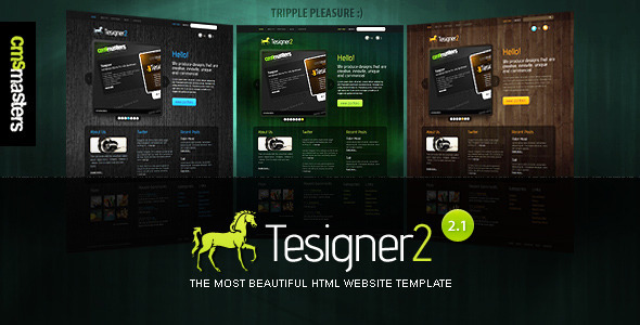 Tesigner2 - The Most Beautiful Website Template