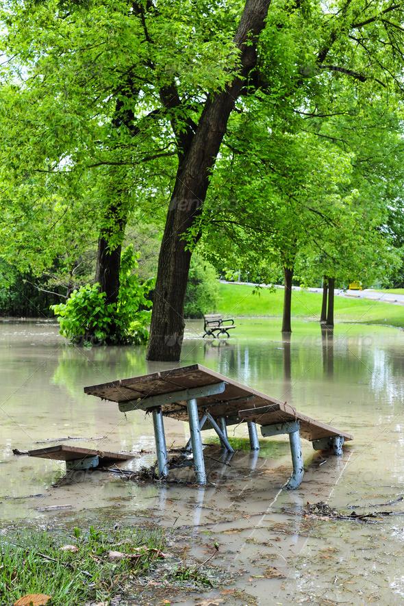 Flood in park
