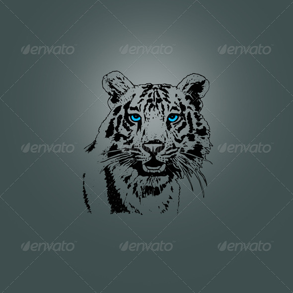 Tiger Head Design - Animals Characters