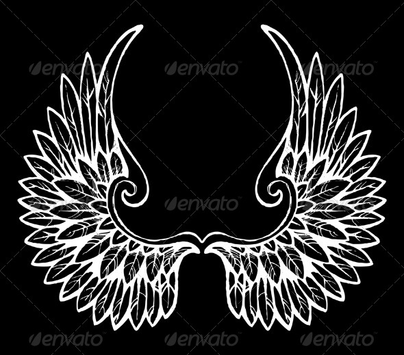 GraphicRiver Wings 5007925