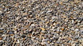 Gravel Background - PhotoDune Item for Sale