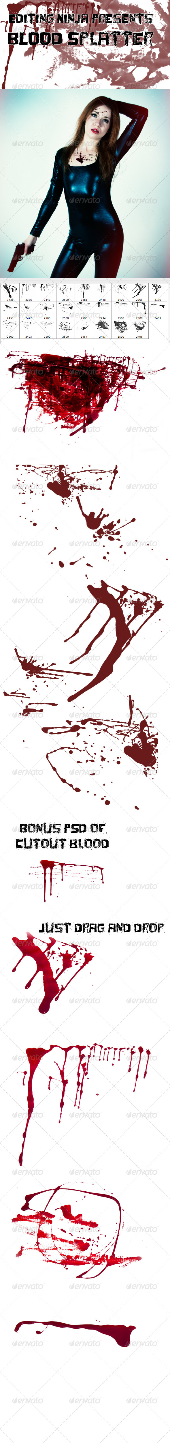 GraphicRiver Blood Splatter 5009898