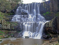 Ebor falls  - PhotoDune Item for Sale
