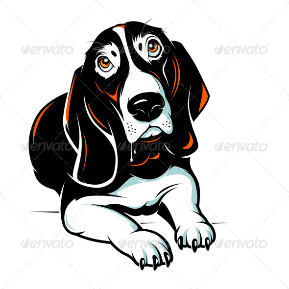 GraphicRiver Basset Hound Dog 5022627