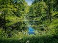 Summer in Paradise - PhotoDune Item for Sale