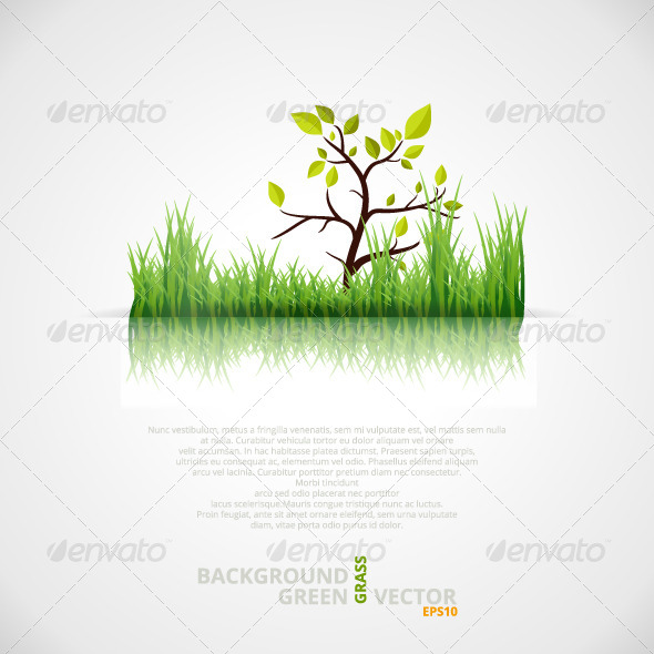 GraphicRiver Vector Background with Green Grass and Tree 5025695