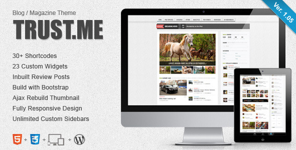 TrustMe - Responsive WordPress Magazine  Blog