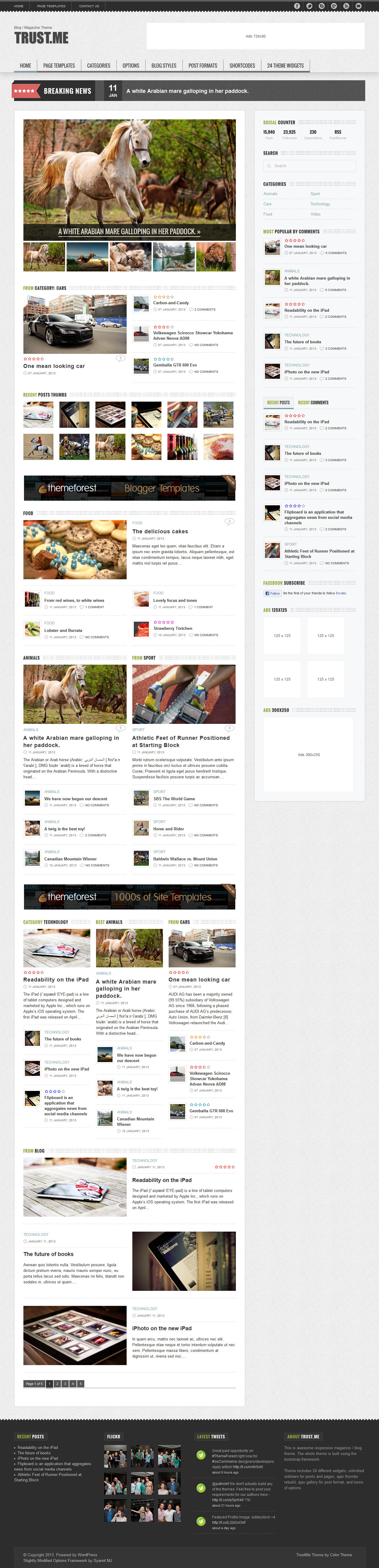 TrustMe - Responsive WordPress Magazine / Blog - Home Page