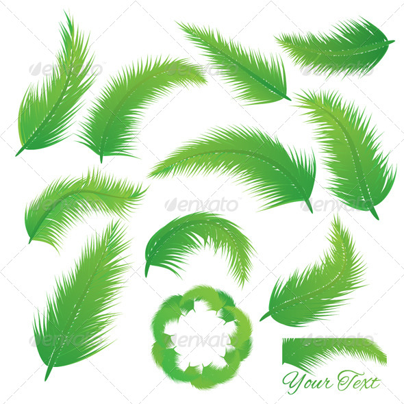 GraphicRiver Coconut Leaf 5029416