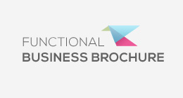 Functional Business Brochures