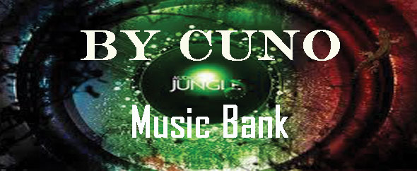 Audio-jungle-4