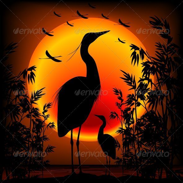 GraphicRiver Heron Shape on Stunning Sunset 5037659