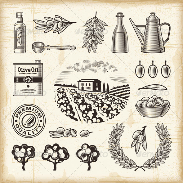 GraphicRiver Vintage Olive Harvest Set 5038845