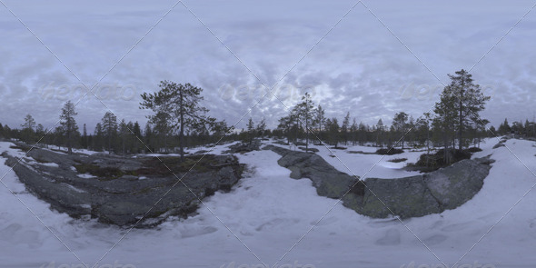 Nature HDRI - Northern Spring Forest - 3DOcean Item for Sale