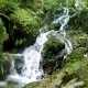 Waterfall In Forest - 5