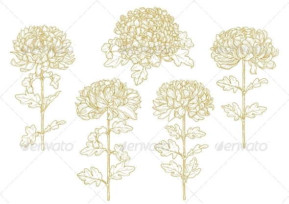 GraphicRiver Set of One-Colored Outlined Chrysanthemum 5059938