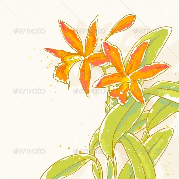 GraphicRiver Branch of Orange Orchids on Toned Background 5060802