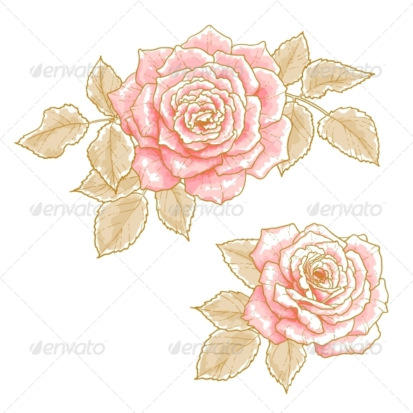 GraphicRiver Pink Roses 5060870