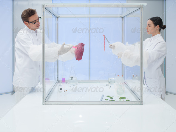 Laboratory workers testing a meat sample - Stock Photo - Images