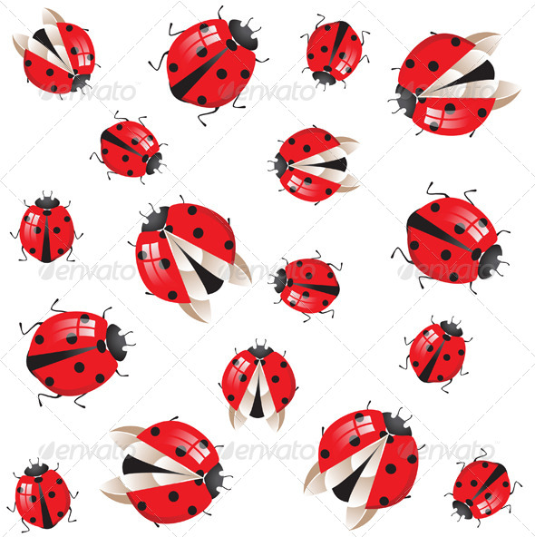 GraphicRiver Ladybirds Ornament 5073332