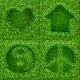 Symbols on Green Grass Set