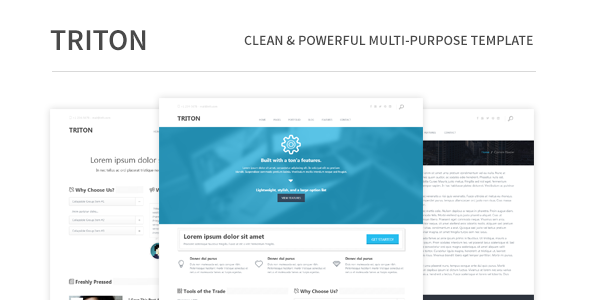 ThemeForest Triton Clean and Powerful Mult-Purpose Template 5054643
