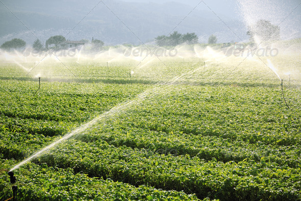 PhotoDune farm background irrigation system 521783