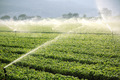 farm background, irrigation system