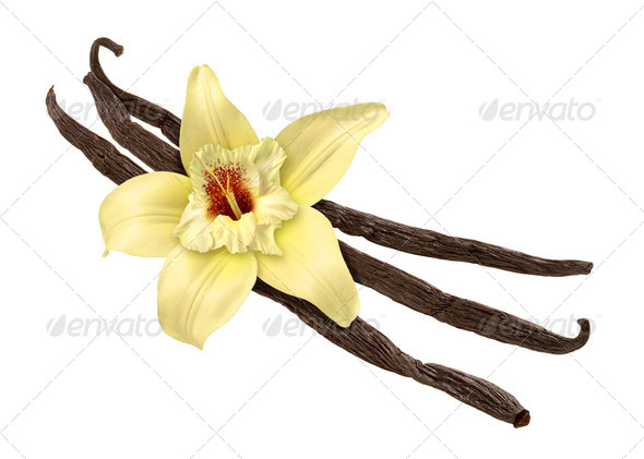 PhotoDune Vanilla Bean and Flower clipping path 525340