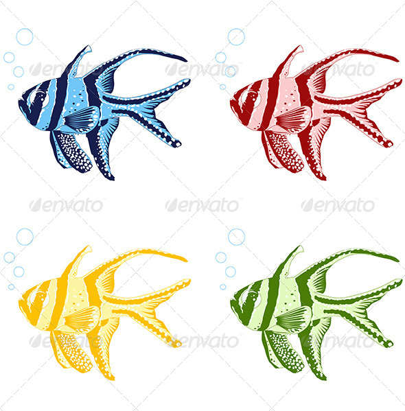 GraphicRiver Tropical Fishes 5084488