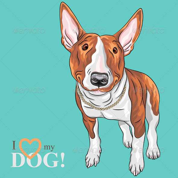 Cartoon Bull Terrier Smiling - Animals Characters