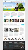 01-03-homepage-boxed.__thumbnail