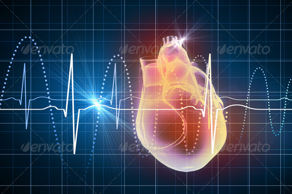 Human heart beats - Stock Photo - Images
