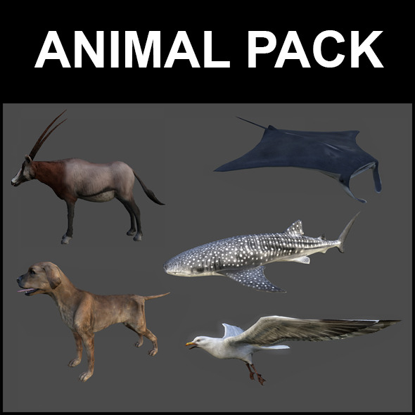 Animal Pack - 3DOcean Item for Sale