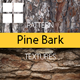 Pine Bark Surface Textures